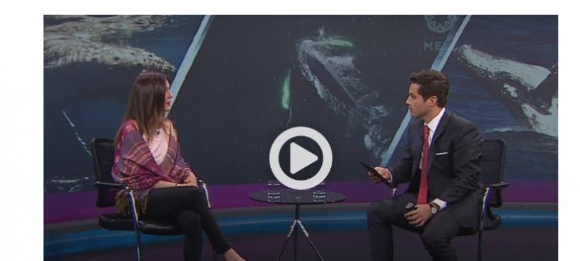 Entrevista a Investigadora de Fundación MERI, Sonia Español en Futuro 360 de CNN Chile