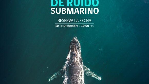 I Seminario de ruido submarino