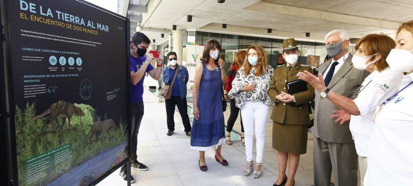 """Inauguración expo """"Cetácea, Ecos del Mar"""""""